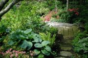Фото 56 Хоста в ландшафтном дизайне: особенности ухода и 80 гармоничных композиций для сада