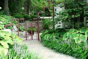 Фото 62 Хоста в ландшафтном дизайне: особенности ухода и 80 гармоничных композиций для сада