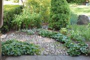 Фото 63 Хоста в ландшафтном дизайне: особенности ухода и 80 гармоничных композиций для сада