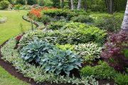 Фото 4 Хоста в ландшафтном дизайне: особенности ухода и 80 гармоничных композиций для сада