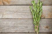 Фото 1 Средиземноморские ароматы круглый год: выращивание розмарина в квартире и его применение