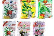 Фото 39 Средиземноморские ароматы круглый год: выращивание розмарина в квартире и его применение