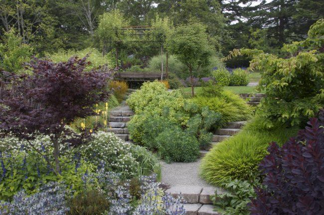 Очень уютный задний двор частного дома с интересными композициями из декоративных растений