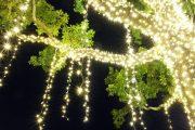 Фото 12 Как украсить сад к Новому году: 80 идей, которые преобразят ландшафтный дизайн вашего дома