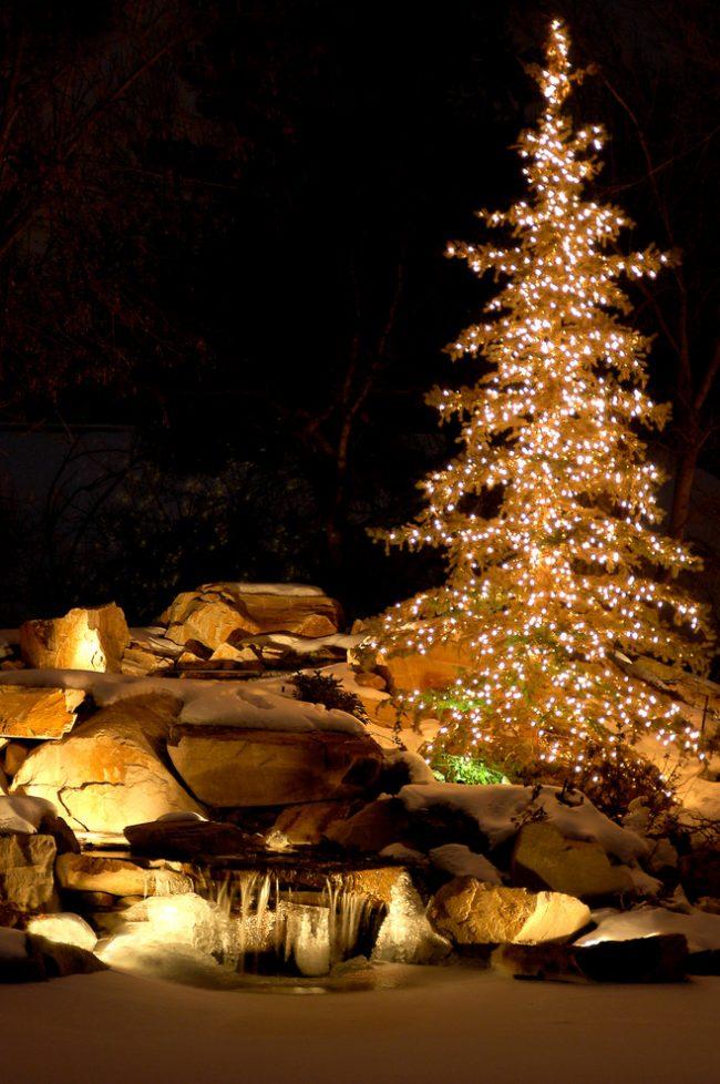 Правильная подсветка альпийской горки и светодиодные гирлянды сделают ваш сад неотразимым