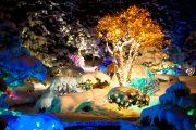 Фото 31 Как украсить сад к Новому году: 80 идей, которые преобразят ландшафтный дизайн вашего дома
