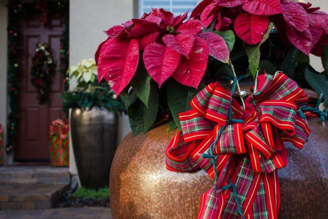 Банты с новогодней расцветкой придадут яркости дизайну вашего ландшафта