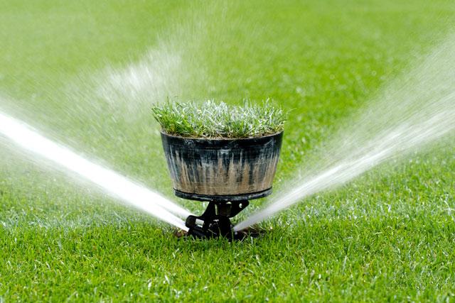 Так как поливать газон необходимо рано утром, рекомендуется установить автоматическую систему полива, запрограммированную на определенное время