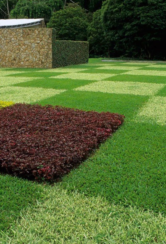 Смесь разных сортов травы помогут создать необычный ландшафт на газоне