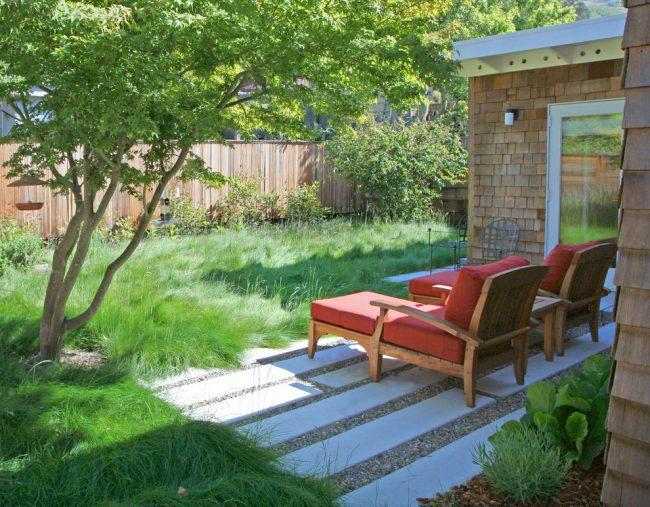 газонная трава, которая уничтожает сорняки: очистить газонную траву от мусора и листвы помогут веерные грабли
