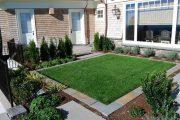 Фото 25 Газонная трава, которая уничтожает сорняки: простое решение для идеального сада