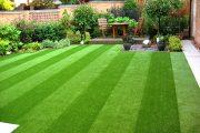 Фото 28 Газонная трава, которая уничтожает сорняки: простое решение для идеального сада