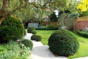 Фото 31 Газонная трава, которая уничтожает сорняки: простое решение для идеального сада