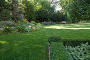 Фото 33 Газонная трава, которая уничтожает сорняки: простое решение для идеального сада