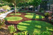 Фото 1 Газонная трава, которая уничтожает сорняки: простое решение для идеального сада