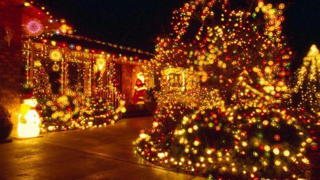 Новогодняя иллюминация может стать еще сказочнее, если добавить ледяных украшений в саду