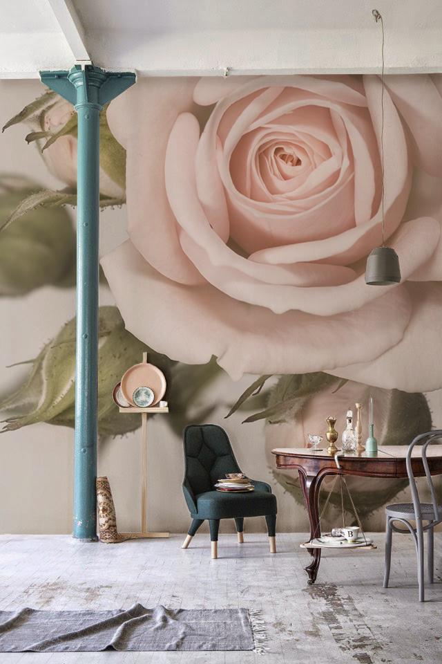 Объемные панорамные фотообои с изображением нежного цветка