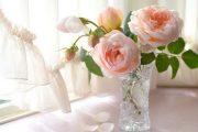Фото 6 Идеальная ваза для роз: как выбрать нужную и секреты продления жизни цветов