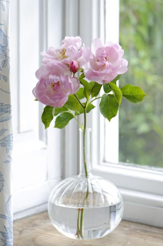 Колбообразная ваза для одной веточки