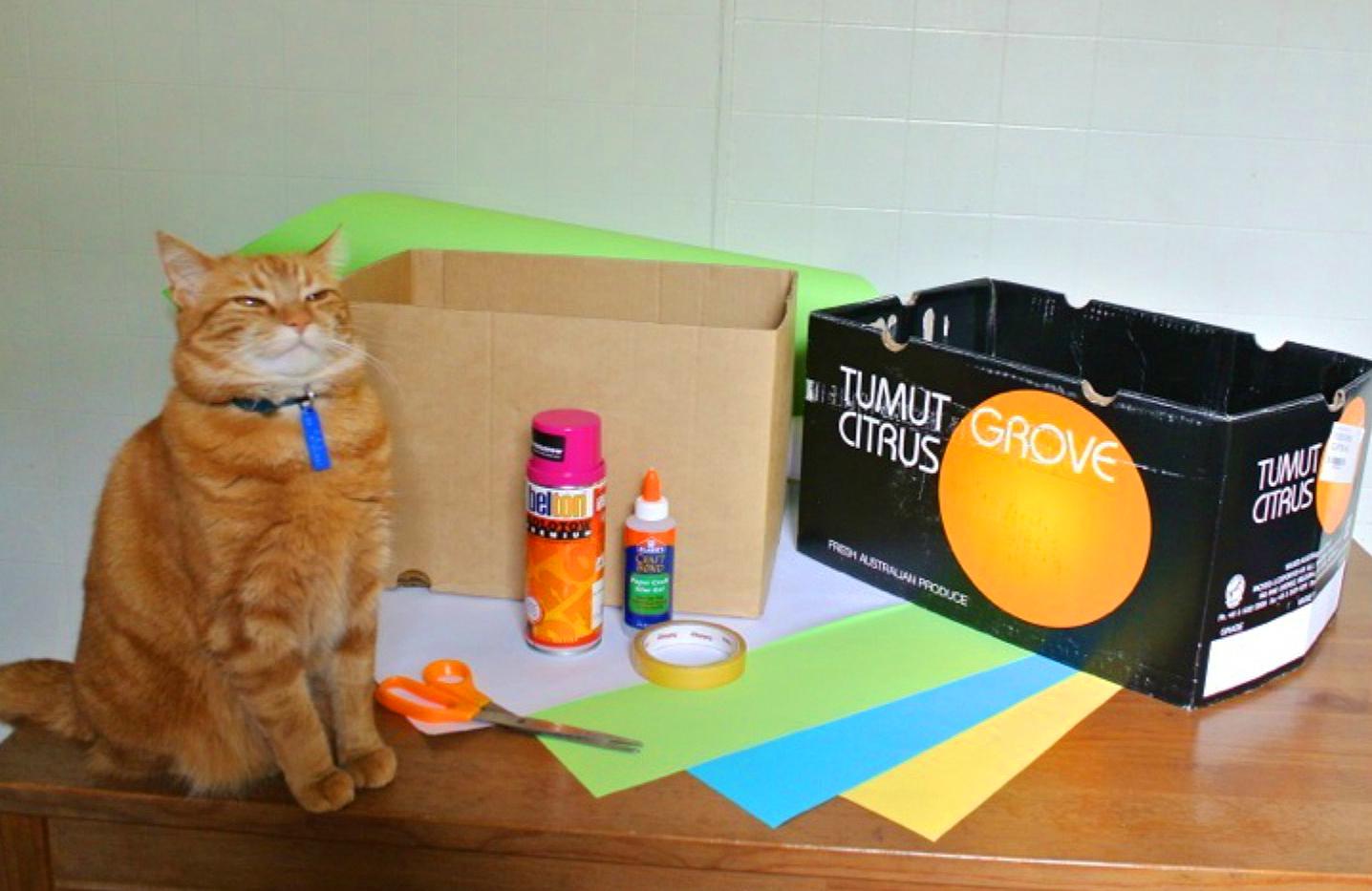 Как сделать еду для кота дома