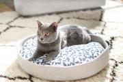 Фото 50 Делаем дом для кошки своими руками: выбор материалов и пошаговые мастер-классы