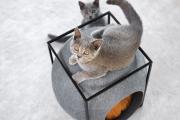 Фото 55 Делаем дом для кошки своими руками: выбор материалов и пошаговая инструкция