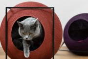 Фото 54 Делаем дом для кошки своими руками: выбор материалов и пошаговые мастер-классы