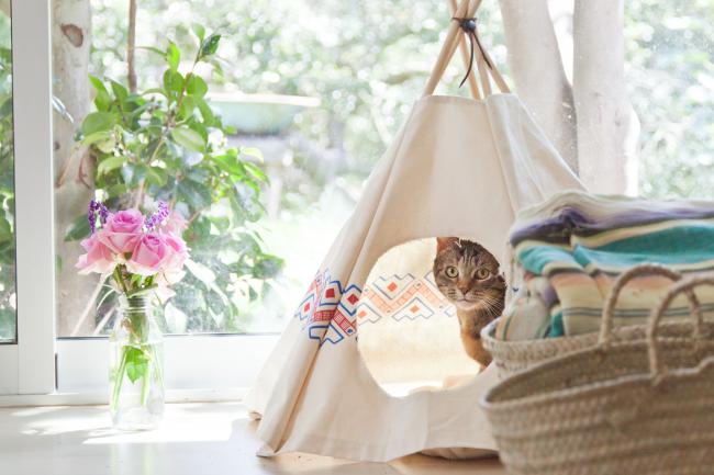 Кошачий вигвам –простой способ украсить комнату и подарить кошке свой уголок