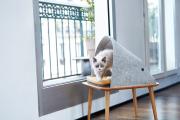 Фото 25 Делаем дом для кошки своими руками: выбор материалов и пошаговые мастер-классы