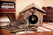 Фото 28 Делаем дом для кошки своими руками: выбор материалов и пошаговая инструкция