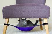 Фото 34 Делаем дом для кошки своими руками: выбор материалов и пошаговая инструкция