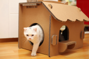 Фото 38 Делаем дом для кошки своими руками: выбор материалов и пошаговые мастер-классы