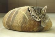 Фото 42 Делаем дом для кошки своими руками: выбор материалов и пошаговая инструкция