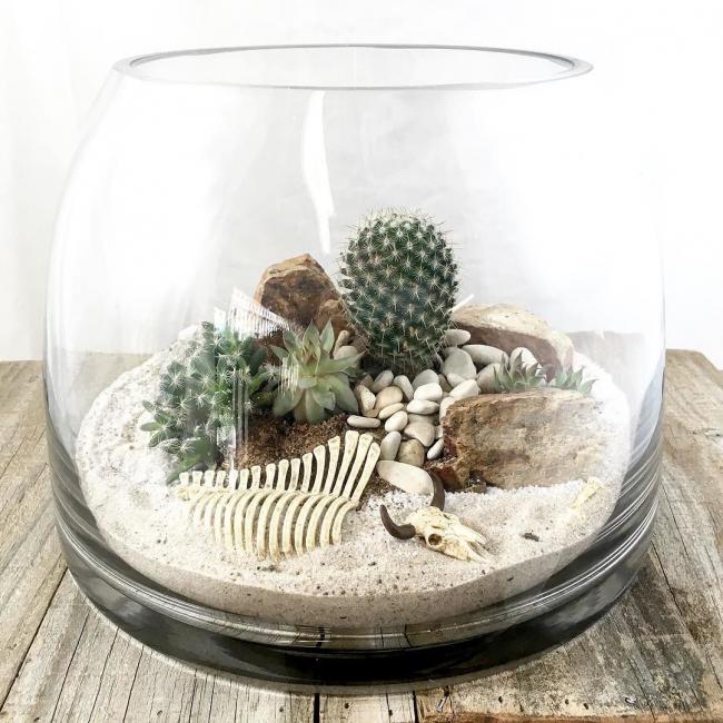 Небольшой флорариум с невероятной атмосферой дикой пустыни прямо на вашем столе
