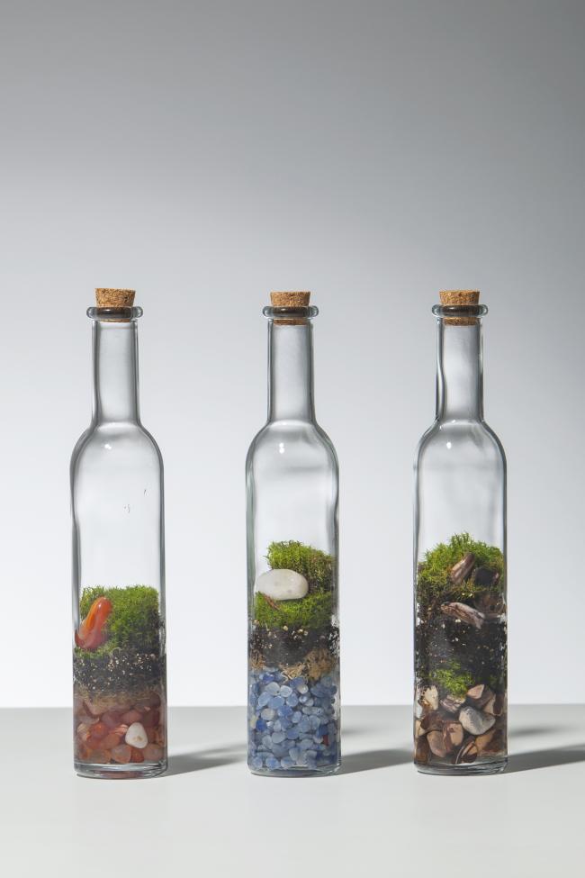 Флорариумы с композициями из мха в стеклянных бутылках