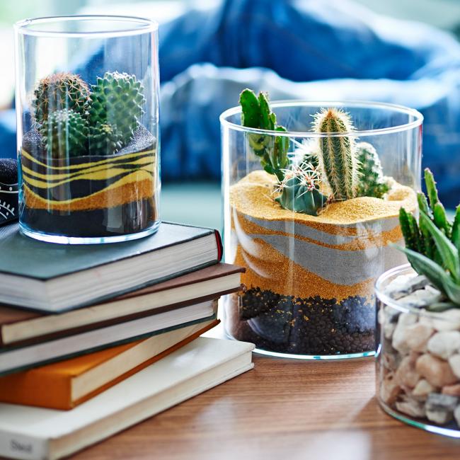 Обязательные атрибуты пустыни - конечно же кактусы. Дополнит композицию пустынного флорариума цветной песок, который задаст настроение флорариума