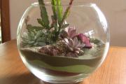 Фото 7 Флорариум своими руками: пошаговая инструкция по созданию мини-сада из суккулентов