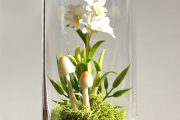 Фото 23 Флорариум своими руками: пошаговая инструкция по созданию мини-сада из суккулентов