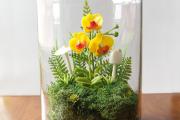 Фото 30 Флорариум своими руками: пошаговая инструкция по созданию мини-сада из суккулентов