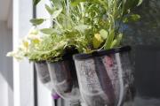 Фото 57 Поделки из пластиковых бутылок своими руками: лучшие идеи для хэндмейда