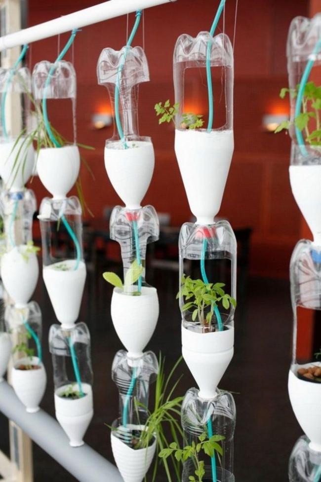 Максимально автоматизированный полив и экономия места: подвешенные одна над другой пластиковые бутылки с проходящей сквозь них надрезанной трубкой с водой