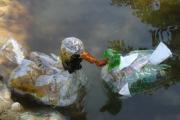 Фото 52 Поделки из пластиковых бутылок своими руками: лучшие идеи для хэндмейда