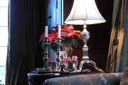 Фото 3 Пуансетия: уход в домашних условиях и все тонкости обрезки, размножения