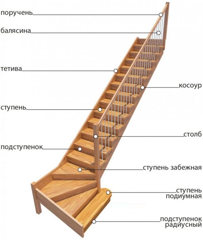Схематическое изображение лестницы с названием всех составляющих