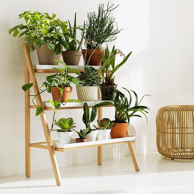Удобная этажерка послужит подставкой для домашней оранжереи