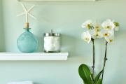 Фото 15 Горшочек для орхидеи: определяемся с размерами и все секреты правильного выбора