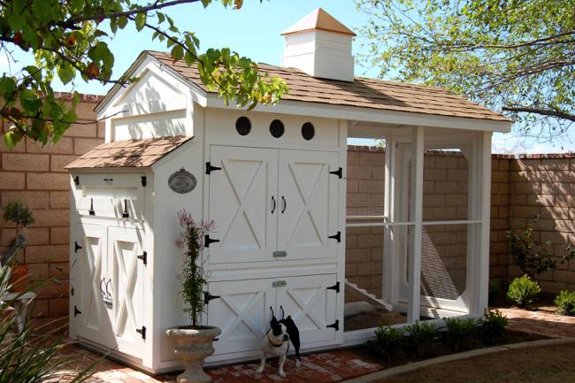 Удачно расположенный курятник, защищенный от проникновения хищников и с удобной крышкой ящика для гнезд