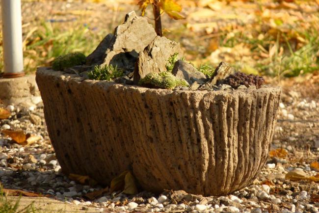 Любой пень или камень при правильном их оформлении могут стать отличным элементом декора для вашего сада