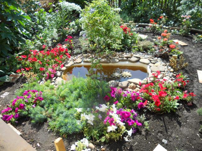 Современно и стильно выглядит садовый водоем, сделанный из вкопанной ванны или другой большой емкости, если его границы обложить галькой