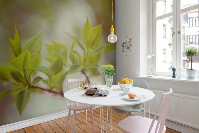 Фотообои на кухню (цветы или ветви) помогут создать желаемый акцент на короткой стене